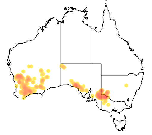 distribution map showing range of Acacia acanthoclada in Australia