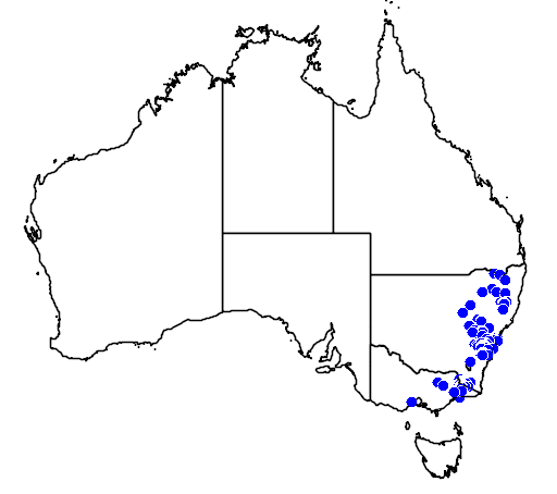 distribution map showing range of Acacia amoena in Australia