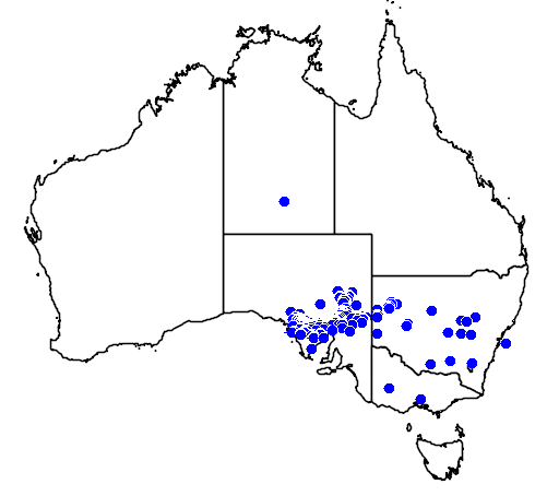 distribution map showing range of Acacia beckleri in Australia