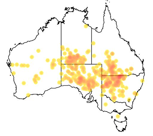 distribution map showing range of Acacia brachystachya in Australia