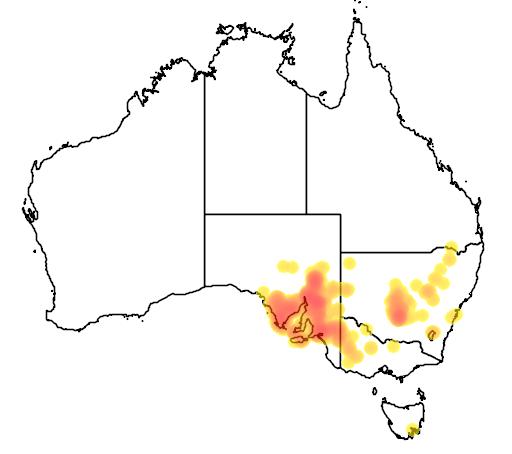 distribution map showing range of Acacia calamifolia in Australia