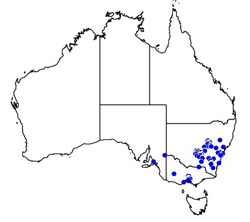 distribution map showing range of Acacia cardiophylla in Australia