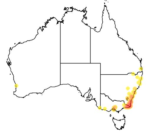 distribution map showing range of Acacia cognata in Australia