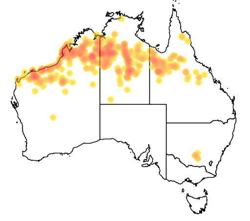 distribution map showing range of Acacia colei in Australia