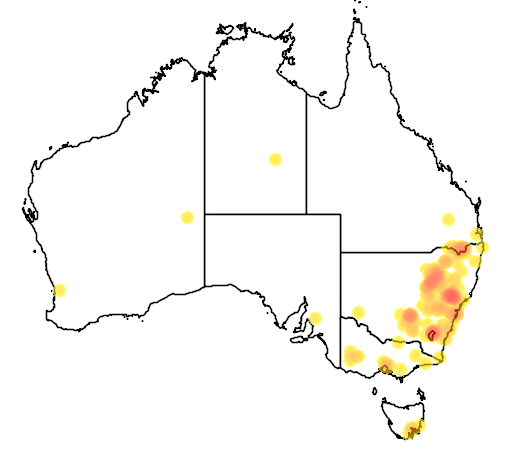 distribution map showing range of Acacia cultriformis in Australia
