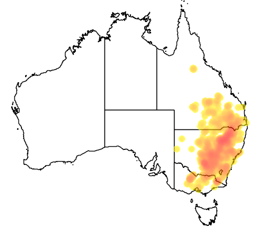 distribution map showing range of Acacia deanei in Australia