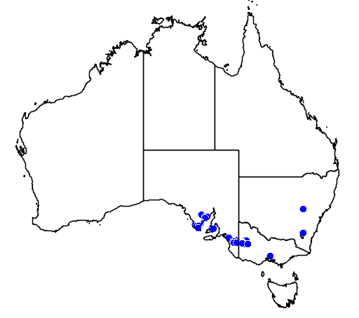 distribution map showing range of Acacia enterocarpa in Australia