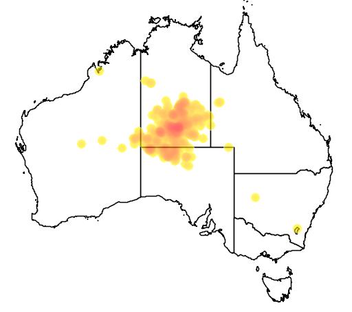 distribution map showing range of Acacia estrophiolata in Australia