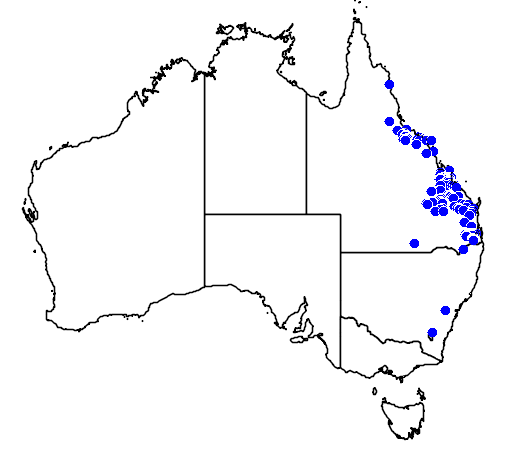 distribution map showing range of Acacia fasciculifera in Australia