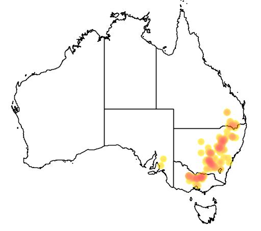 distribution map showing range of Acacia flexifolia in Australia
