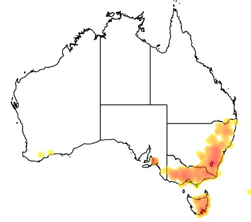 distribution map showing range of Acacia gunnii in Australia