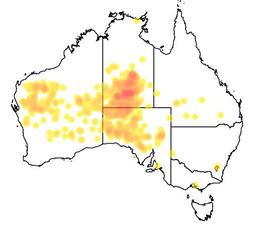 distribution map showing range of Acacia kempeana in Australia