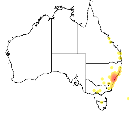 distribution map showing range of Acacia linifolia in Australia