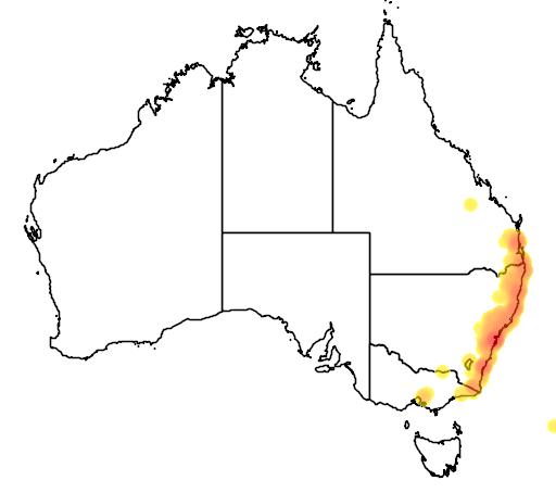 distribution map showing range of Acacia longissima in Australia