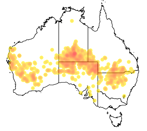 distribution map showing range of Acacia murrayana in Australia