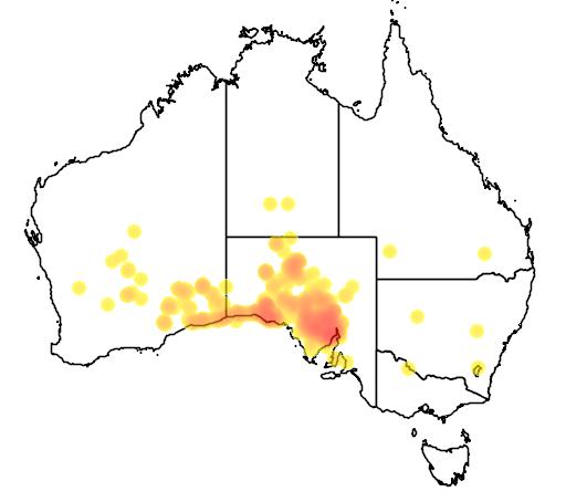 distribution map showing range of Acacia papyrocarpa in Australia
