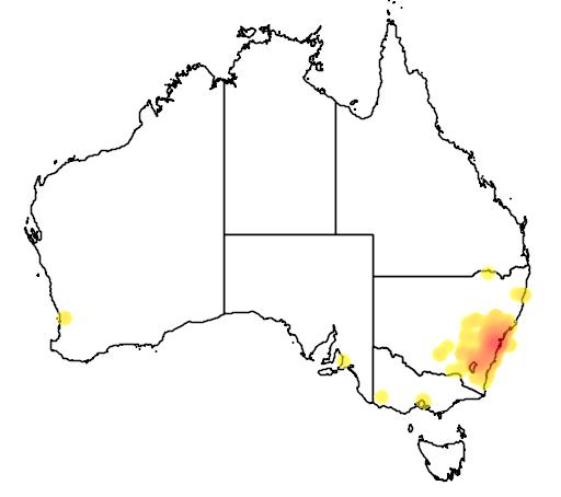 distribution map showing range of Acacia parramattensis in Australia