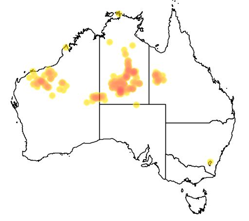 distribution map showing range of Acacia spondylophylla in Australia