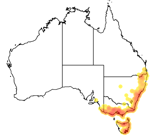 distribution map showing range of Acacia stricta in Australia