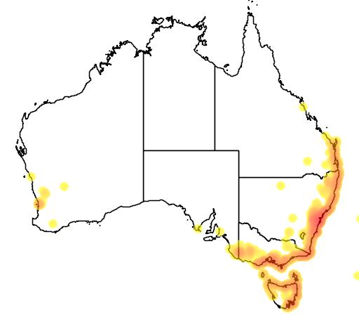 distribution map showing range of Acacia suaveolens in Australia