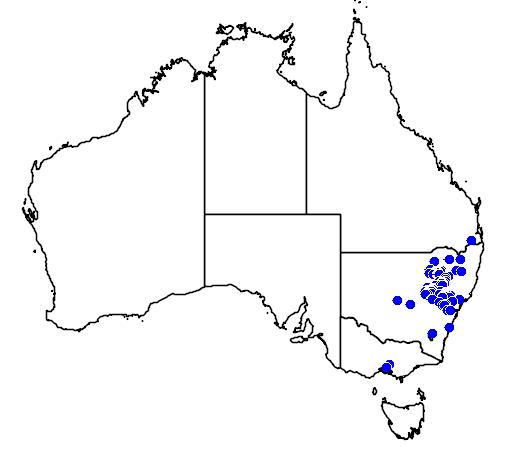 distribution map showing range of Acacia subulata in Australia