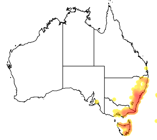 distribution map showing range of Acacia terminalis in Australia