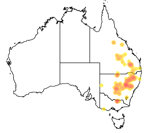 distribution map showing range of Acacia triptera in Australia