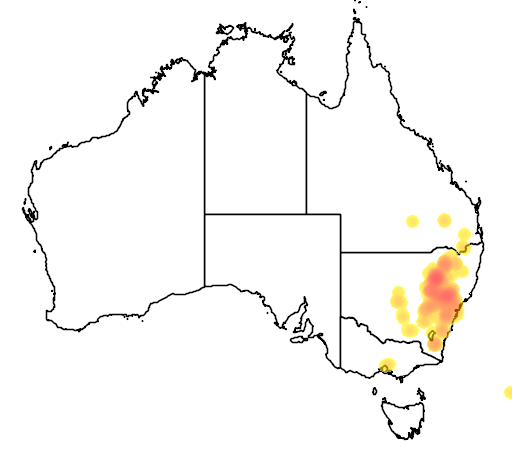 distribution map showing range of Acacia uncinata in Australia