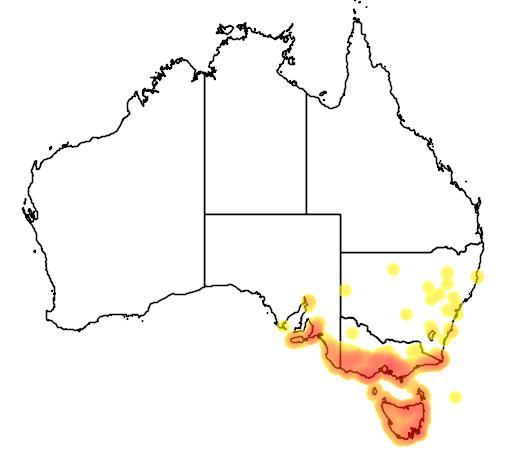 distribution map showing range of Acacia verticillata in Australia