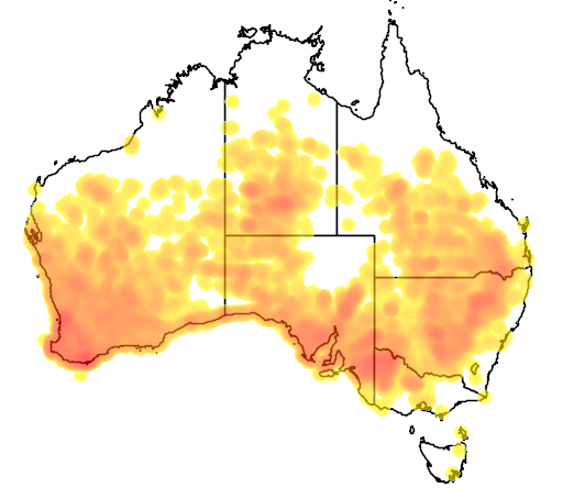 distribution map showing range of Acanthiza apicalis in Australia