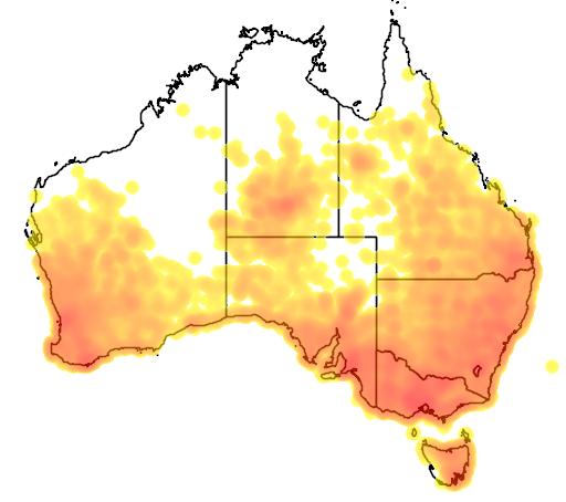 distribution map showing range of Acanthiza chrysorrhoa in Australia