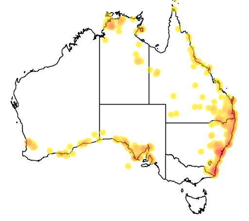 distribution map showing range of Acanthophis antarcticus in Australia