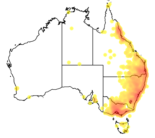 distribution map showing range of Acridotheres tristis in Australia