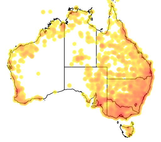 distribution map showing range of Acrocephalus australis in Australia