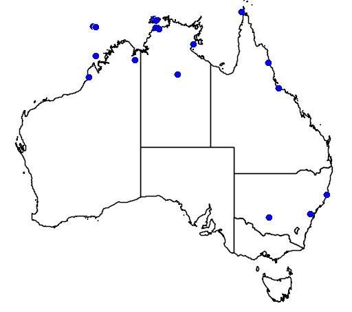 distribution map showing range of Acrocephalus orientalis in Australia