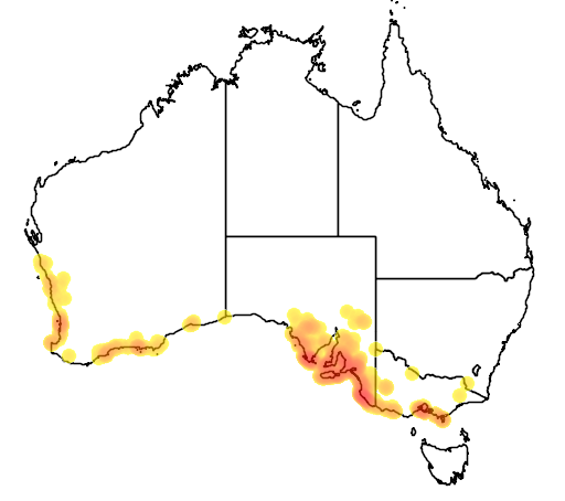 distribution map showing range of Adriana quadripartita in Australia