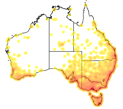 distribution map showing range of Anas castanea in Australia