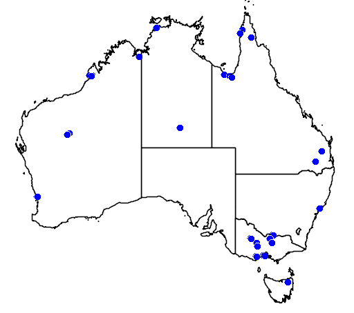 distribution map showing range of Anas querquedula in Australia