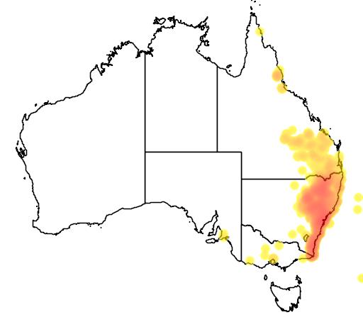 distribution map showing range of Angophora floribunda in Australia