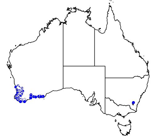 distribution map showing range of Anigozanthos bicolor in Australia