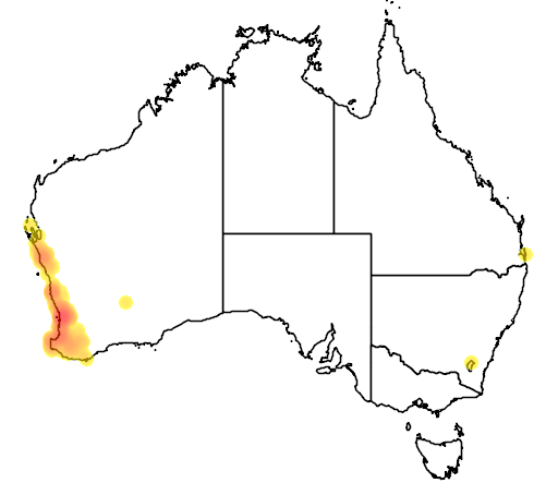 distribution map showing range of Anigozanthos manglesii in Australia