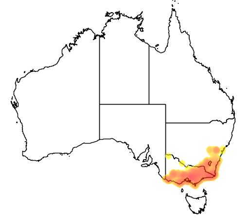 distribution map showing range of Antechinus agilis in Australia
