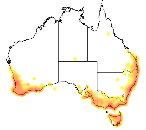 distribution map showing range of Anthochaera lunulata in Australia