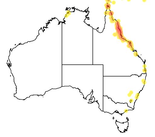 distribution map showing range of Aplonis metallica in Australia