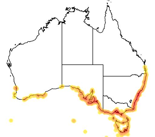 distribution map showing range of Arctocephalus fosteri in Australia
