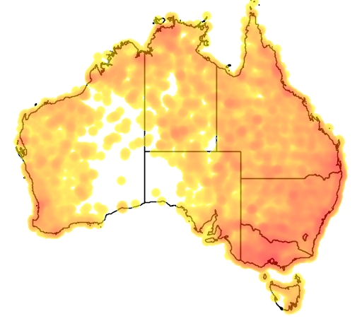 distribution map showing range of Ardea pacifica in Australia