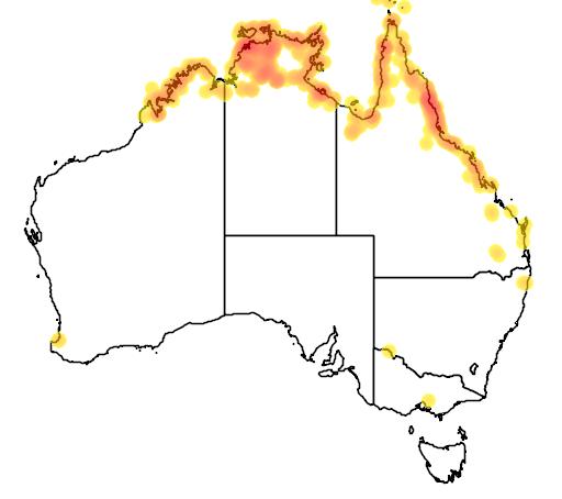 distribution map showing range of Ardea sumatrana in Australia
