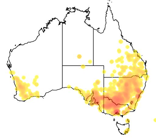 distribution map showing range of Atriplex semibaccata in Australia