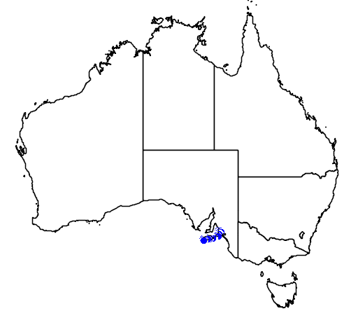 distribution map showing range of Austrelaps labialis in Australia