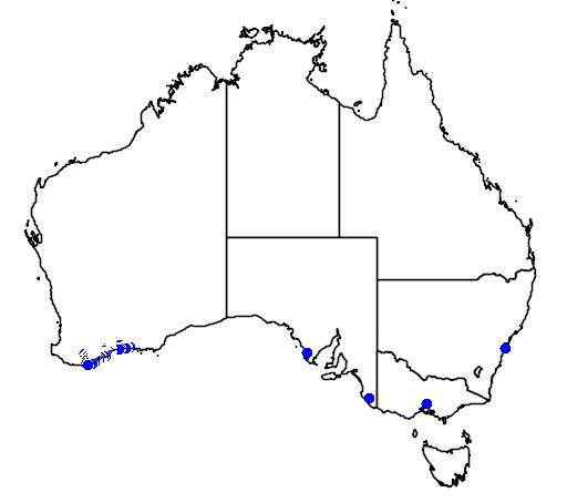 distribution map showing range of Banksia baxteri in Australia
